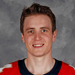 Mike Downing Stats And Player Profile Theahl Com The American Images, Photos, Reviews
